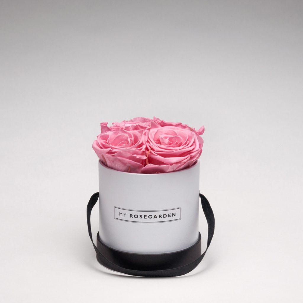 Rosenbox mit 4 Infinity-Rosen – rund, weiß