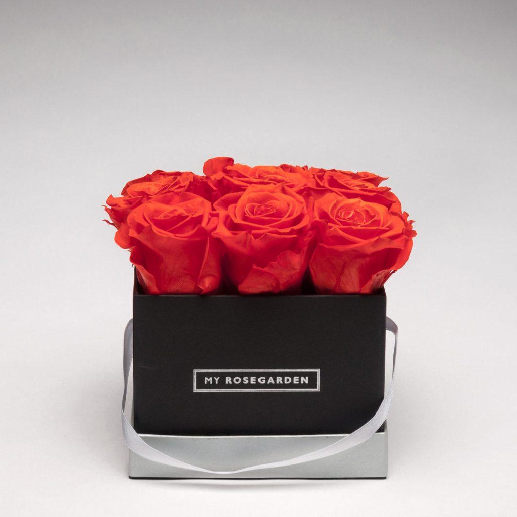 Rosenbox mit 9 Infinity-Rosen – eckig, schwarz
