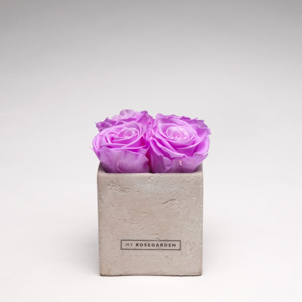 Rosenwürfel 4 Rosen in Betonoptik grau