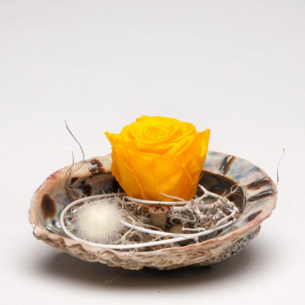 Perlmutt-Muschel mit haltbarer Infinty-Rose